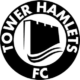 Tower Hamlets FC club badge