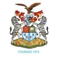 AFC Hayes club badge