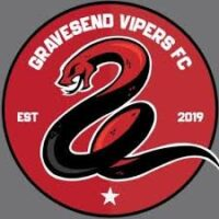 Gravesend Vipers club badge